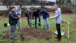 Baumpflanz-Aktion der MSS13 im Schulgarten.