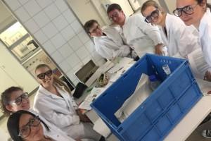 Andere Lernumgebung, aber gleiches Fach: Chemie-Leistungskursler mit Herrn Drewes an der Uni Trier.