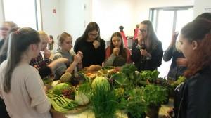 Schüler untersuchen das Gemüse auf Geruch und Geschmack.